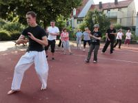 Tai Chi Training (15.06.2011)